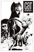Catwoman #41, redo, commission piece for collectors